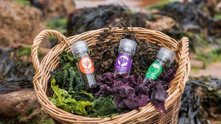 The products Tony makes with the seaweed he uses.