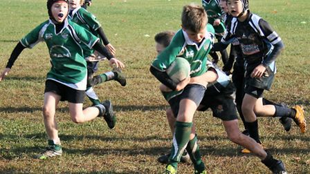 Sidmouth Undffer-10s Crazy Reindeer in action against Newton Abbot