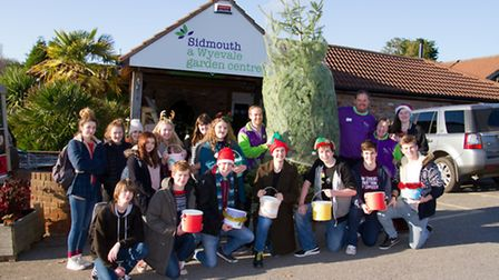 Sidmouth college pupils annual christmas tree carry from the garden centre. Ref shs 48-16TI 2831. Pi