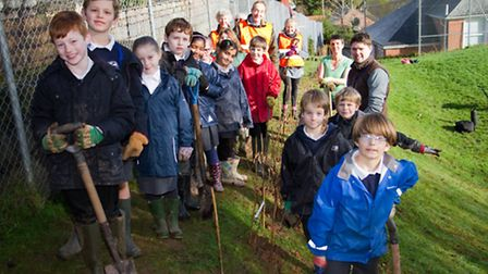 Tree planting at Sidmouth primary school's Woolbrook site. Ref shs 06-17TI 6765. Picture: Terry Ife