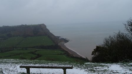 iwitness24-2364136-Sidmouth-in