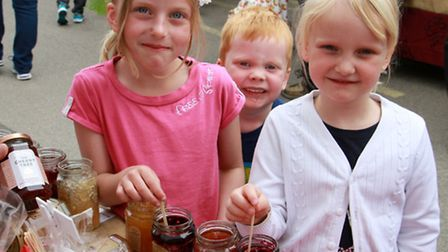 Trying some of the jams at the Ottery Food and Family Festival. Ref sho 23-16TI 1494. Picture: Terry