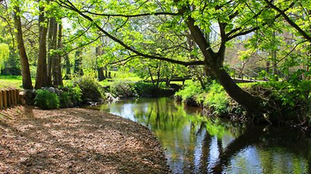 The River Sid passes through the Byes. Ref shs 23-16SH 0028. Picture: Simon Horn.