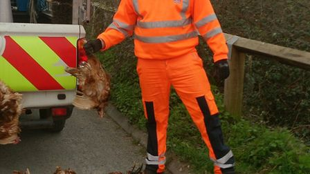 EDDC StreetScene team were cleared to clear up the flytipping near Fairmile.