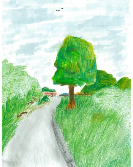 Lyra's drawing of the Land of Canaan, in Ottery, was chosen as a winnner.