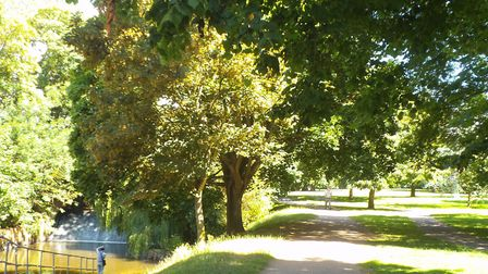 The Byes Footpath in Sidmouth