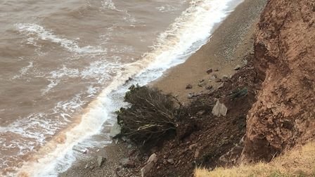 The latest Sidmouth cliff fall is believed to be the biggest the town has seen in years.