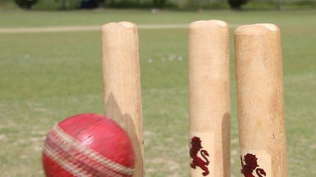 Cricket-stumps1