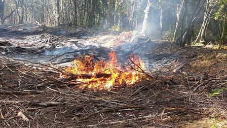 The fire in Shute Woods pictured byRoanna Blackmore