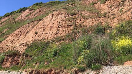 The cliffs at Jacob's Ladder