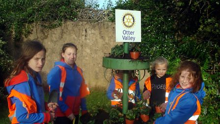 Ottery guides lend a hand to Ottery in Bloom.