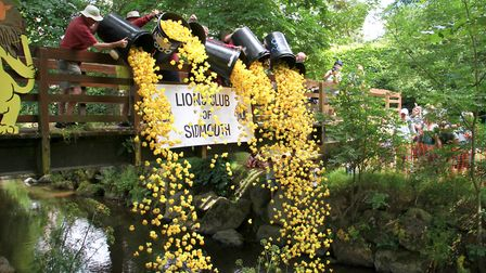 Sidmouth lions duck race. Ref shs 29-16TI 4462. Picture: Terry Ife