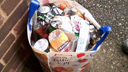 Litter from Denise Bickley's cleanup of Woolbrook