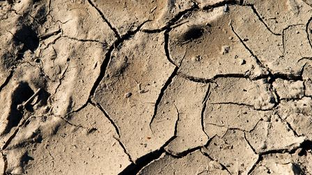 Cracked earth from recent dry weather creates interesting patterns. Picture: Alex Walton Photography