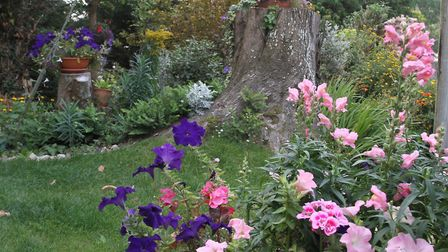 Part of the delightful gardens at Witheby. Ref shs 5621-38-14SH Picture: Simon Horn