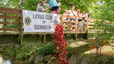 The Sidmouth Lions Great Duck Derby. Ref shs 28-17TI 7148. Picture: Terry Ife