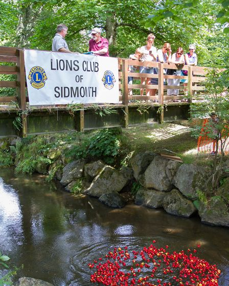 The Sidmouth Lions Great Duck Derby. Ref shs 28-17TI 7149. Picture: Terry Ife