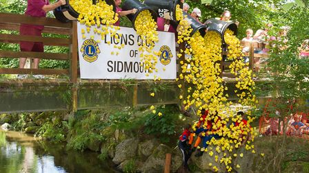 The Sidmouth Lions Great Duck Derby. Ref shs 28-17TI 7173. Picture: Terry Ife