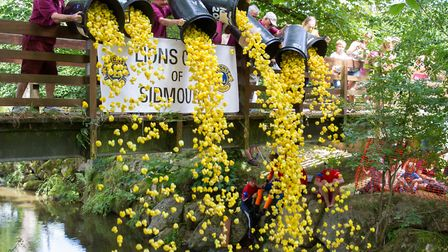 The Sidmouth Lions Great Duck Derby. Ref shs 28-17TI 7174. Picture: Terry Ife
