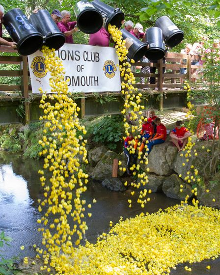 The Sidmouth Lions Great Duck Derby. Ref shs 28-17TI 7175. Picture: Terry Ife