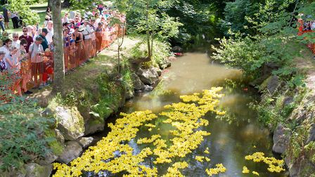 The Sidmouth Lions Great Duck Derby. Ref shs 28-17TI 7180. Picture: Terry Ife