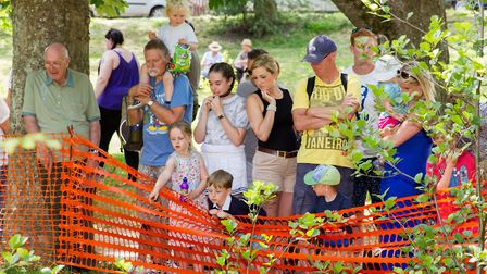 The Sidmouth Lions Great Duck Derby. Ref shs 28-17TI 7182. Picture: Terry Ife