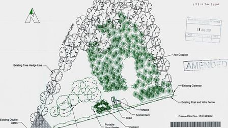 Plans have been submitted to change the use of woodland in Littledown Lane on the outskirts of Newto
