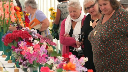 The Sid Valley Horticultural Society held their 88th annual garden and craft show last year. Picture