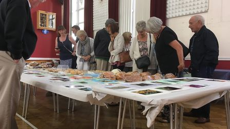 Visitors look at the 370 exhibits on show at the Beer Horticulutral Society's flower show