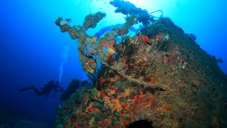 One of the local West Palm Beach wrecks which was a test dive to ensure kit was working okay.