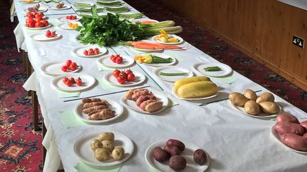 The Red Lion Inn hosted a vegetables and flower show