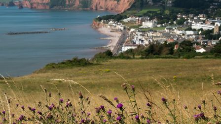 A beautiful view of Sidmouth from Salcombe Hill. Ref shr Sidmouth up close 7283. Picture: Alex Walto