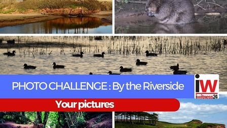 By the Riverside photo challenge results.