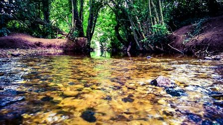 Our little brook that runs through our town of Cranbrook. Picture: James Cook