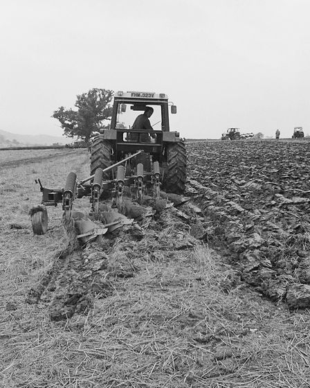 Buckland Farm ploughing match at Sidford. Ref shs Ploughing match Nost 1980. Picture: Sidmouth Heral