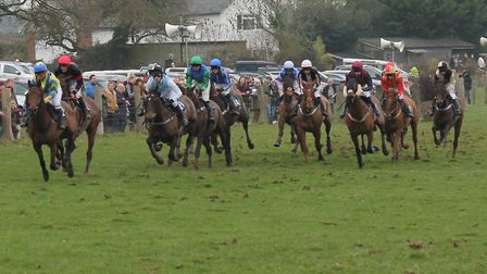Point to Point racing. Picture: Lesley Carter.