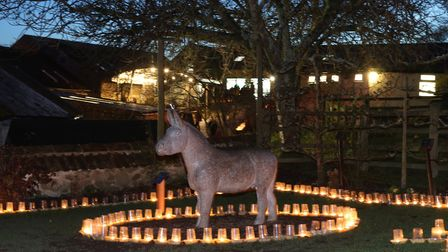 The Donkey Sanctuary hosted its annual Carols by Candlelight service