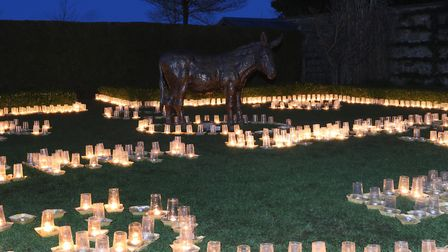 Carols by candlelight at The Donkey Sanctuary. Picture: Simon Horn