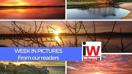 A round-up of pictures sent in by our readers this week.