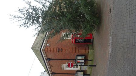 I went past Sidmouth Market House, where a Christmas tree was up yesterday afternoon, Monday 20th No