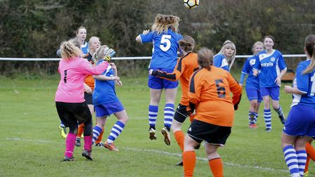Ottery St Mary ladies action