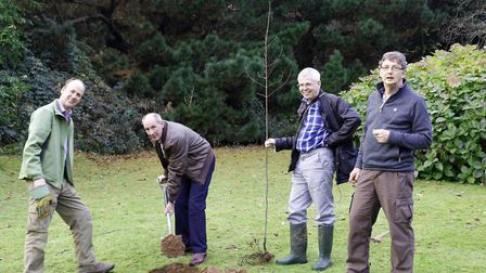 Cllr Kelvin Dent leads planting at Knowle. Picture: Diana East