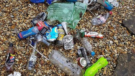 Mandy Ward collected this rubbish after a run through the Land of Canaan in Ottery.