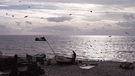 Fishermen on the beach selling their latest catch but only the seagulls are interested! Picture: Bar