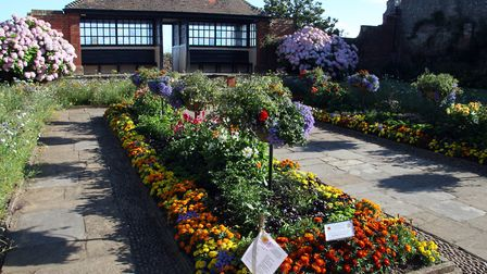 Sidmouth in summer. Connaught Gardens in its full floral glory. Ref shs 7006-33-15AW. Picture: Alex