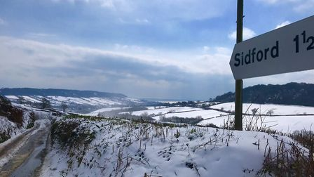 This is my favourite view, looking down the valley towards Sidford and then Sidmouth. Picture: Jason