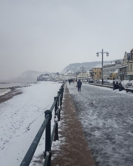 Loved the look of the snow over the trees and beach. Picture: Laura Rattue