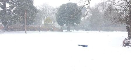 Spot the four year old in Blackmore Gardens. Picture: Georgie Nichols