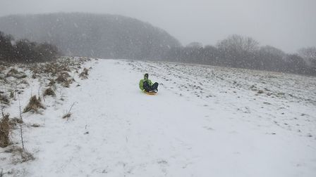 Brave soul at Salcombe Hill. Picture: Kate Hennessy
