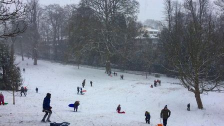Sarah Hall took this postcard shot of people enjoying their snow day sleighing down the hill at Know